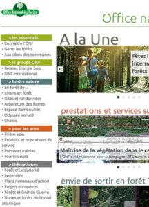 Agence SEO Analytics Senseego